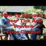How To Remove A Tick and Prevent Lyme Disease!